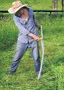 Trabalhando com uma gadanha tradicional. In Mother Earth News, n.º 265, pág. 38