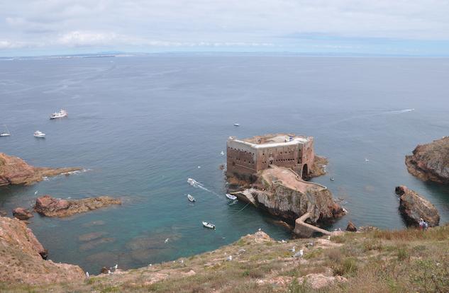 Uma das visitas da Campo Aberto em 2014 foi à ilha da Berlenga (julho).
