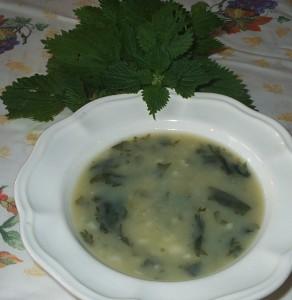 Uma bela sopa de urtigas preparada e fotografada por Alexandra Azevedo