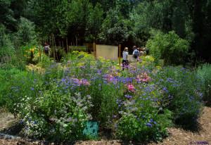 Centro Terre Vivante, imagem de Jean-Jacques RAYNAL para a revista Les 4 saisons du jardin bio editada por esse Centro