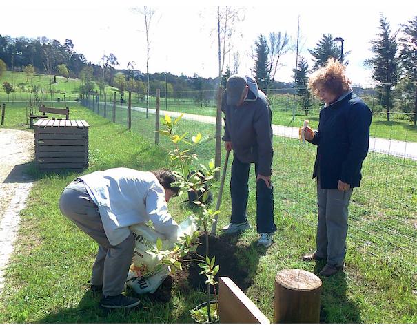 Com as mãos na terra, sujas?, plantando no Parque da Devesa, com a Campo Aberto e a associação Vento Norte.