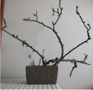 Arranjo floral de Dalila Pinto