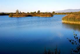 Lagoa de Antela-1