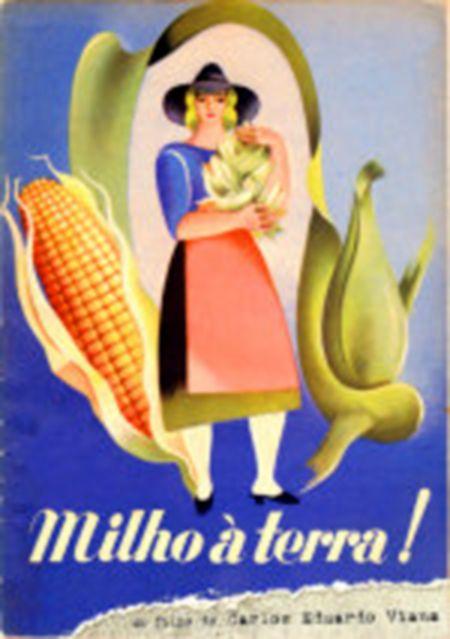 Milho à Terra
